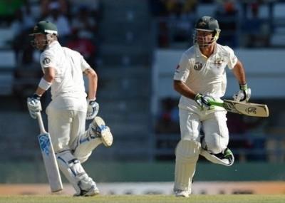 cricket1.jpg