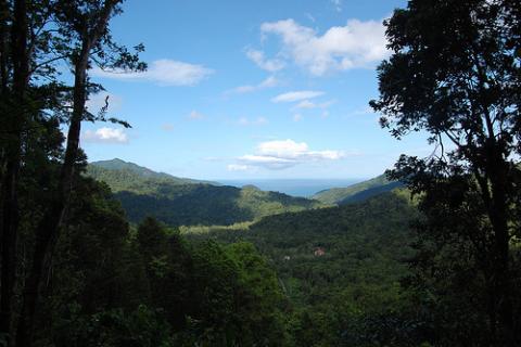 naturaleza-dominica.jpg