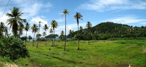 dominica-turismo.jpg