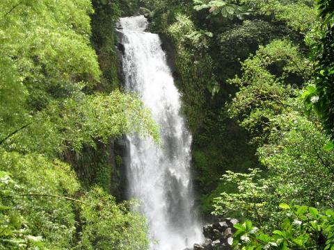 cascada-dominica.jpg